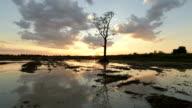 Nature landscape video