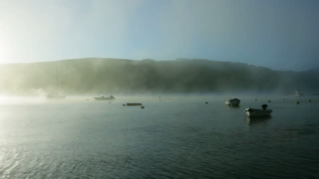 Nature, Misty morning river          NA video