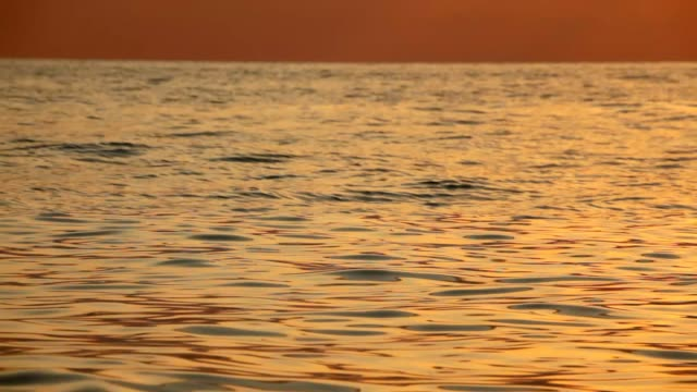 Nature motion background, waving sea with sunset light video