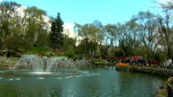 Nature park pond video