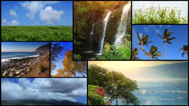 Nature Scenics Montage video