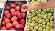 Nectarines And Figs At Fruit Stand video