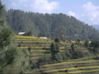 Nepalese countryside video