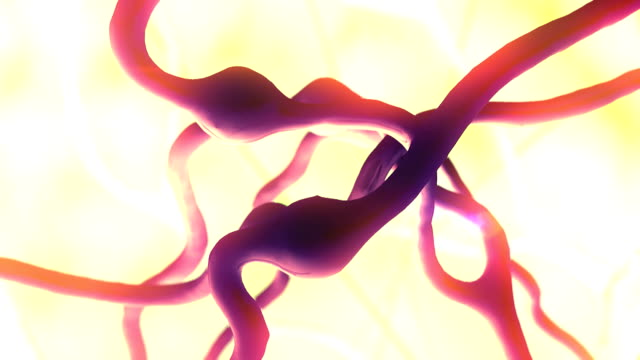 Neuron video