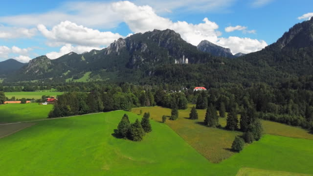 Neuschwanstein Castle And Its Surroundings video