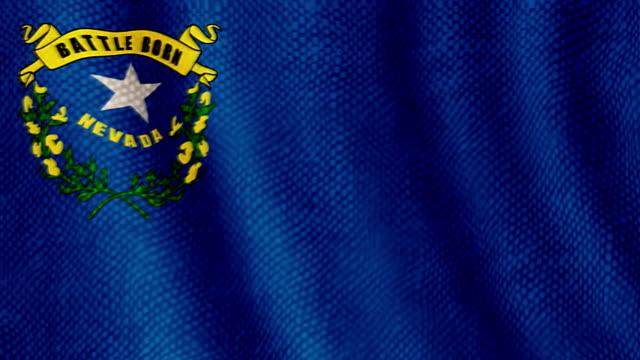 Nevada flag waving animation video