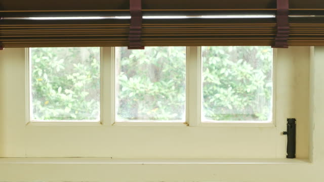 New day,opening window blind video