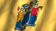 New Jersey State Flag - waving, looping video