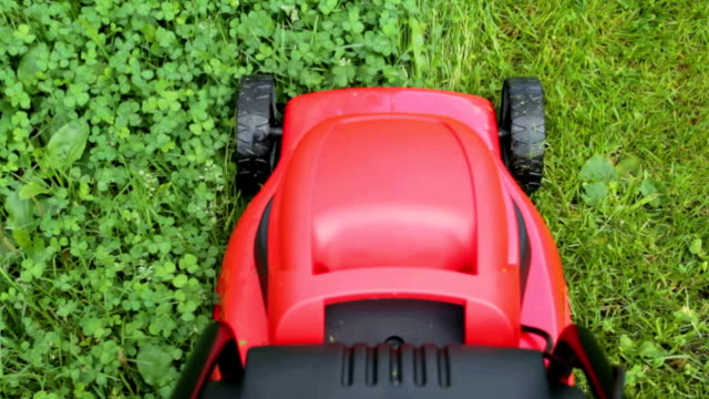 new lawnmower cutting green grass in cloudy day video