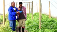 New Technology African Organic Farmers video