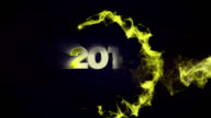 2015 New Year video