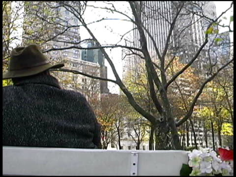New York: Carriage Ride through Central Park video