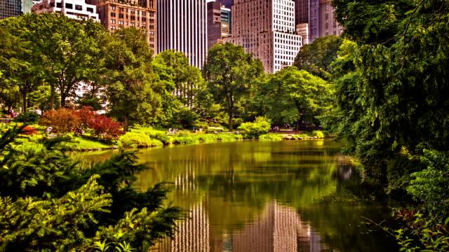 New York. Central Park video