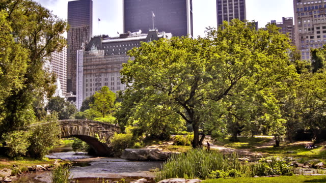 New York central park video