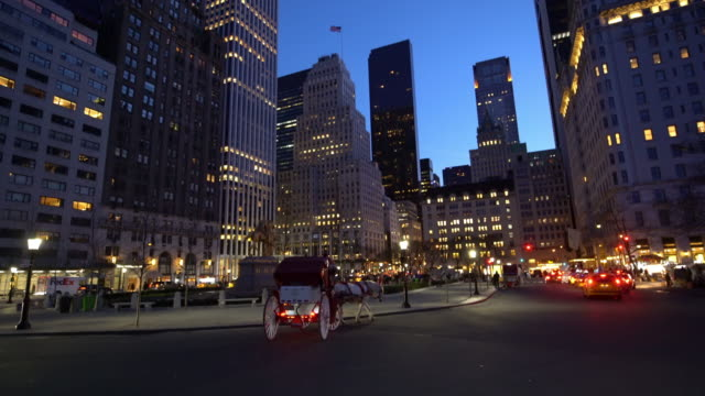 New York City 59th street and Central Park video