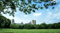 New York City Manhattan Central Park video