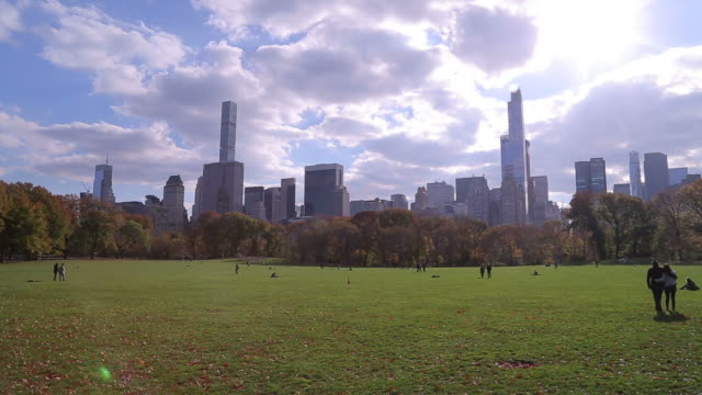 New York City's Central Park's Great Lawn in Fall video