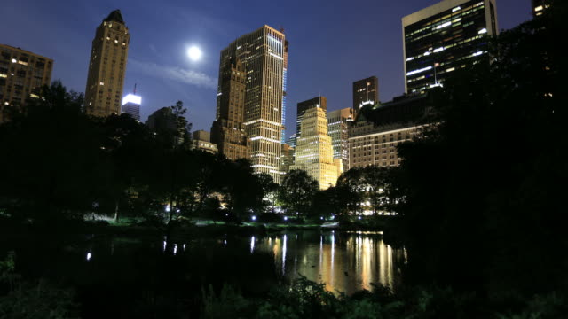 New York skyline from Central park video