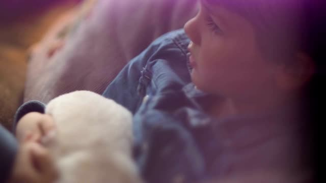 Newborn Golden Retriever Puppies video