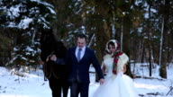 Newlyweds in the winter forest with a horse video