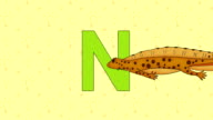 Newt. English ZOO Alphabet - letter N video