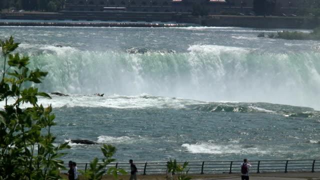 Niagara 8-47: HD 1080/60i video