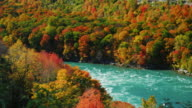 Niagara River flows along the high rocky coast covered autumn forest. Scenic fall day. The popular tourist destination of New York State video