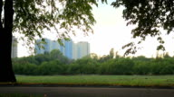Nice summer evening in city park, woman rollerblading, boy riding video