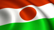 Niger Flag Loopable video