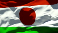 Niger Flag video