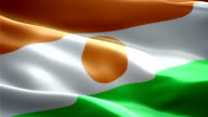 Niger national flag. (New surge and lighting effect) video