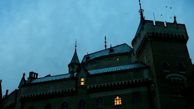 Night castle . Something startled flock  of birds from the roof video