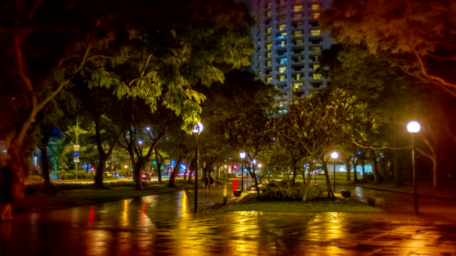 Night city park. video