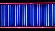 Night neon light 4 video