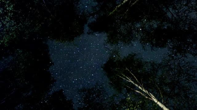 Night sky Time Lapse. Stock video video