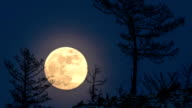 Night Time lapse Large full bright moon rises from above hill into sky. video