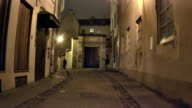 Night Vilnius. Passers-by on the street. video