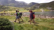 Nordic walking in the mountain video