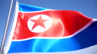 North Korean Flag video