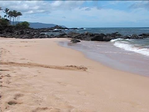 North Shore Beach in Hawaii video