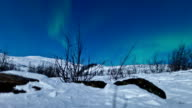 Northern lights (Aurora borealis) panning timelapse in sweden video
