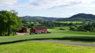 Norwegian countryside village landscape with green farm view video