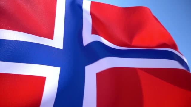 Norwegian Flag video