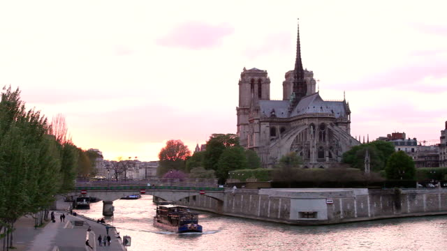 HD: Notre Dame Cathedral at dusk in Paris, France video