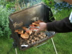 NTSC:Barbecue video