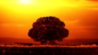 Nuclear blast video