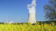 Nuclear Power Station and Canola Field (4:2:2@100 Mb/s) video