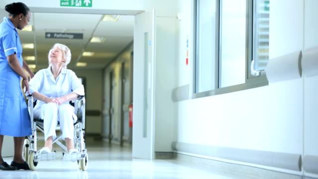 Nursing Staff Patient Wheelchair Modern Hospital video