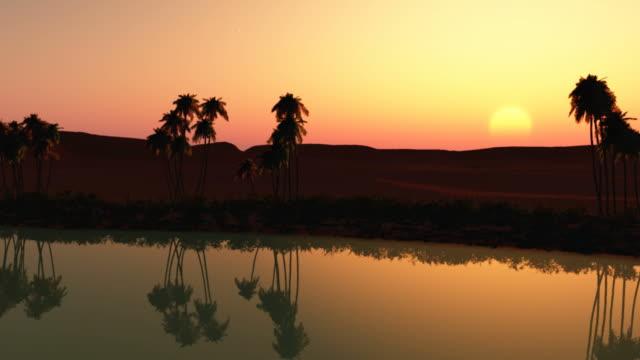 Oasis sunset video