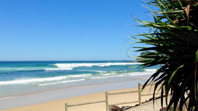 Ocean Beach at Lennox Head, NSW, Australia video